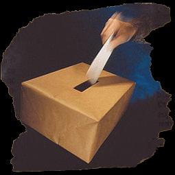 Votaciones, resultados en su votación interactiva - Custom Vote - Voting System