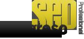 congreso de expertos seo madrid especialistas seopro 2015